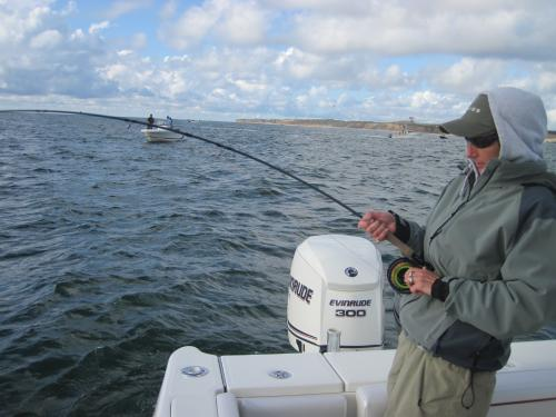 Montauk 2011..... one square mile of F/Albacore..., USA Trips
