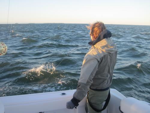 Wind up, wave up, fish on..., USA Trips